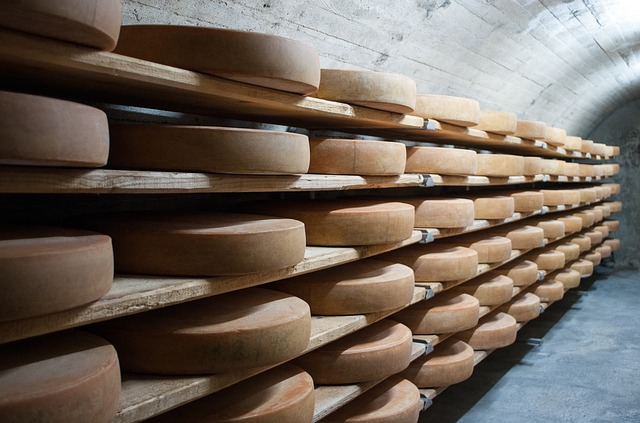 Nejlepší sýry z celého světa